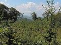Pohľad na západ - panoramio.jpg