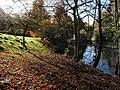 Pond, Taddiforde Brook - geograph.org.uk - 1041368.jpg