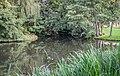 Pond on Meisebach river in Bad Hersfeld.jpg