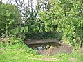 Pond south of Church Knowle Dorset - geograph.org.uk - 307193.jpg
