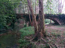 Pont de Mas Riera a Dosquers (1).jpg