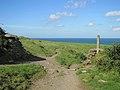 Port Isaac Hills, Cornwall (461124) (9458456966).jpg