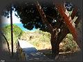 Praia Verde (Portugal) (18313331360).jpg