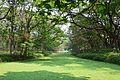 Prain Lake - Indian Botanic Garden - Howrah 2013-03-31 5699.JPG