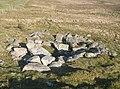 Prehistoric House - geograph.org.uk - 633230.jpg