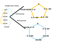 Structural Biochemistrycarbohydrates Wikibooks Open Books For An