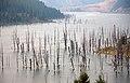 Quake Lake 2 (8037178357).jpg