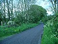 Quiet country lane - geograph.org.uk - 439629.jpg