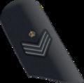 RAF-Flt Sgt-OR-7