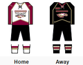 RMU-IL women's hockey jerseys.png