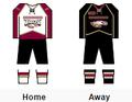 RMU-IL women's hockey jerseys.png