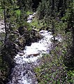 Rainier Stream - panoramio.jpg