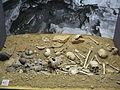 Reconstitution synthétique de la sépulture collective d'Eybral.jpg