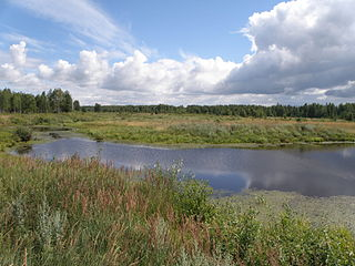 District in Vladimir Oblast, Russia