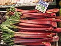 Rhubarb for sale in Seattle.jpg