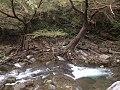 Rio corriente agua.jpg