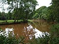 River Camowen turns brown - geograph.org.uk - 934439.jpg