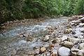 River Mali Rzav and Visocka Banja Spa in Serbia - 4283.NEF 16.jpg