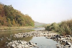 River in Corbett National Park.jpg