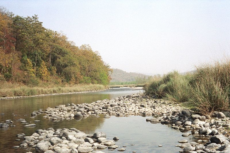 ચિત્ર:River in Corbett National Park.jpg