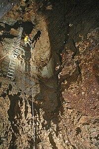 Ladder - Wikipedia