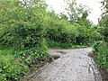 Road Junction - geograph.org.uk - 1381270.jpg