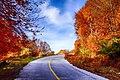 Road to Chania.jpg