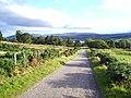 Road to Drumliah - geograph.org.uk - 43453.jpg