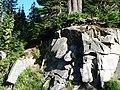 Rock, shadow and tree. (9d1a81b1b1c949c9bc077172fc5fe18e).JPG