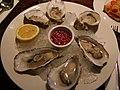 Rock oysters (3353394532).jpg