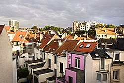 Roofs of Flagey.jpg