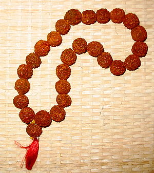 Japamala - Prayer beads made of rudraksha