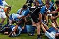 Rugby Anadia - panoramio.jpg