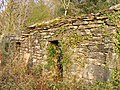 Ruined cottage in Coed y Celyn - geograph.org.uk - 1376124.jpg