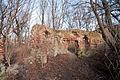Ruiny zamku w Jelczu.jpg