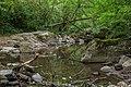 Ruisseau d'Audiernes 07.jpg