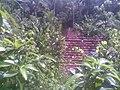 Rushda Vila Home 2011 - panoramio.jpg