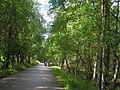 Słowiński National Park2012 04.JPG