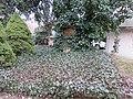 Sachgesamtheit, Kulturdenkmale St. Jacobi Einsiedel. Bild 70.jpg