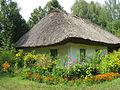 Sadyba selanyna seredniaka in Pereyaslav Skansen IMG 3039 32-110-0023.JPG