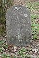 Salantai Jewish Cemetery 2016 (14).JPG