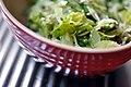 Salat af fennikel, bladselleri og citron (5833734452).jpg
