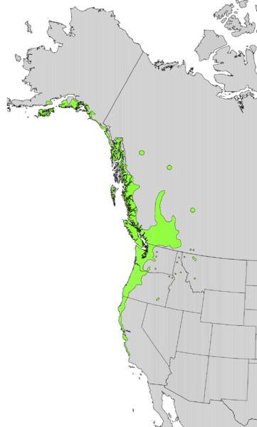 File:Salix sitchensis range map.png