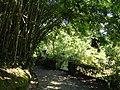 San Juan Botanical Garden - DSC07012.JPG