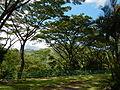 SantaFe,NuevaVizcayaChurchjf6788 04.JPG