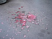 A Sarajevo Rose marking where people were killed by a mortar explosion