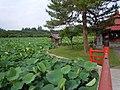 Saruka Park (猿賀公園) - panoramio (1).jpg
