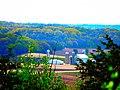 Schoepp Farm - panoramio.jpg