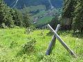 Schutzwaldsanierung Hinterstein.JPG