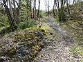 Schwarzenbach Geotope 2015 xy7.JPG